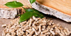 aquecedor biomassa